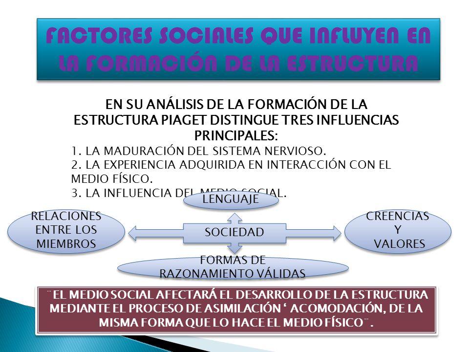 FACTORES SOCIALES QUE INFLUYEN EN LA FORMACIÓN DE LA ESTRUCTURA