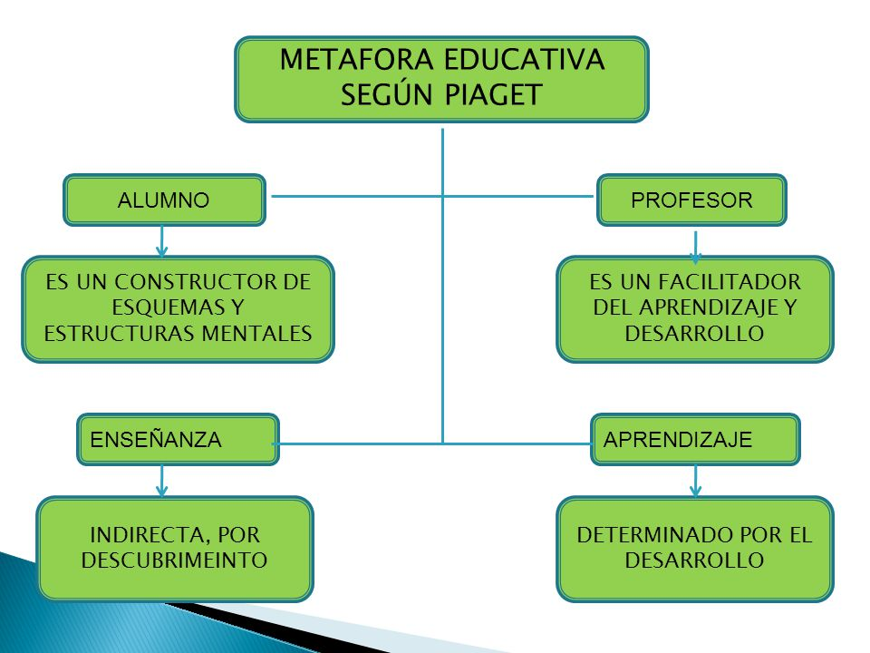 METAFORA EDUCATIVA SEGÚN PIAGET