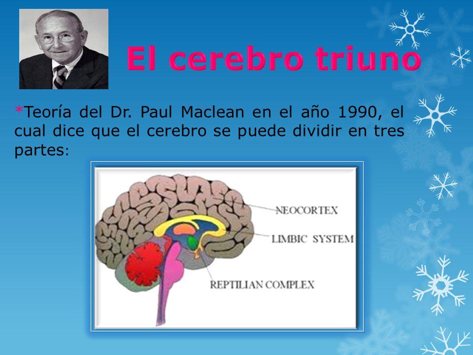 El cerebro triuno *Teoría del Dr.