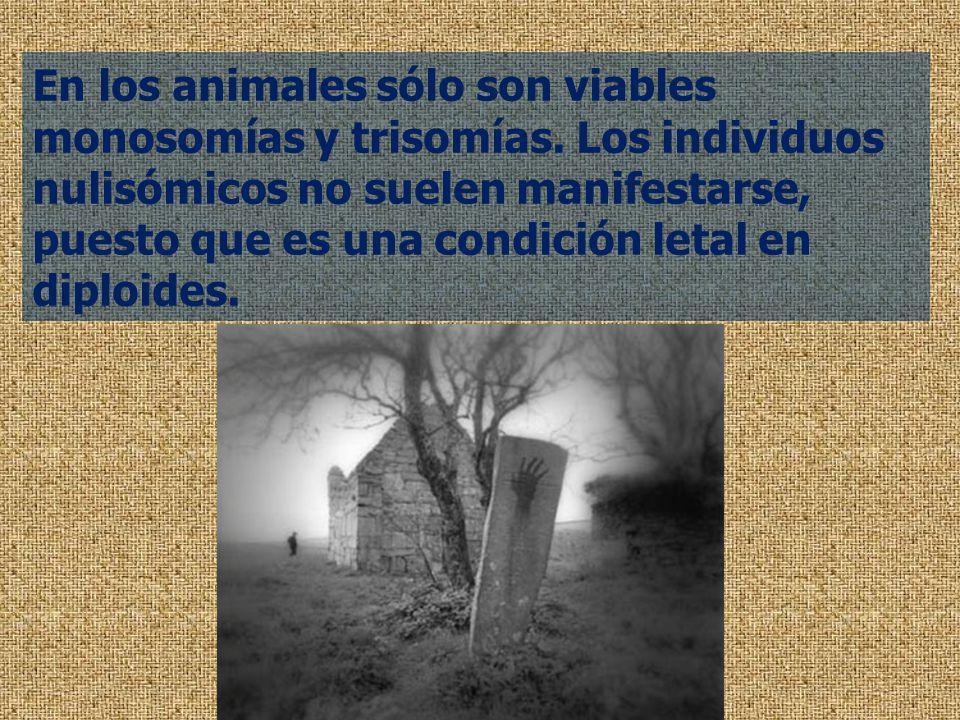 En los animales sólo son viables monosomías y trisomías