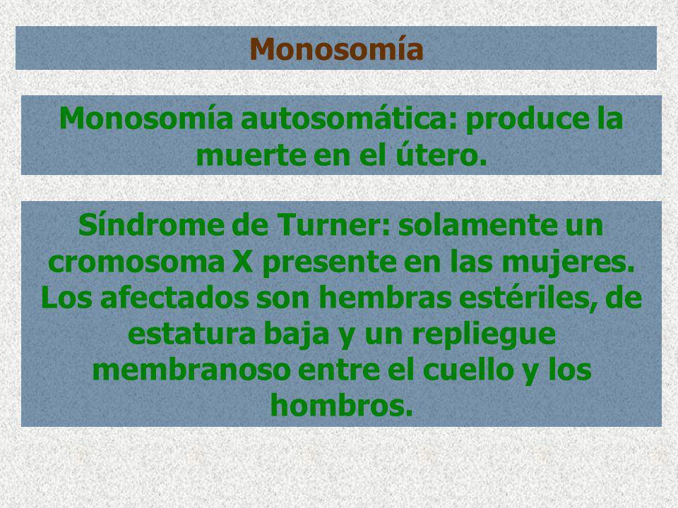 Monosomía autosomática: produce la muerte en el útero.