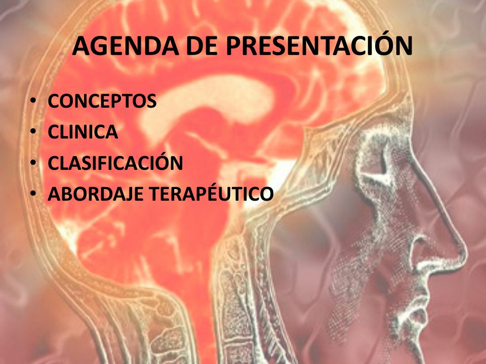 AGENDA DE PRESENTACIÓN