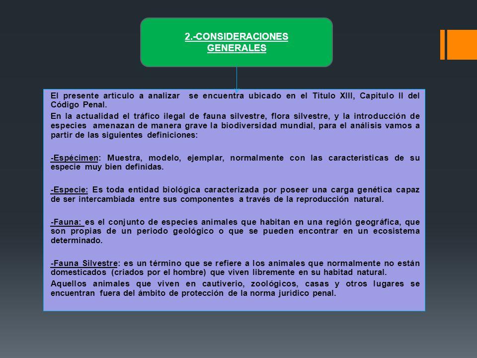 2.-CONSIDERACIONES GENERALES