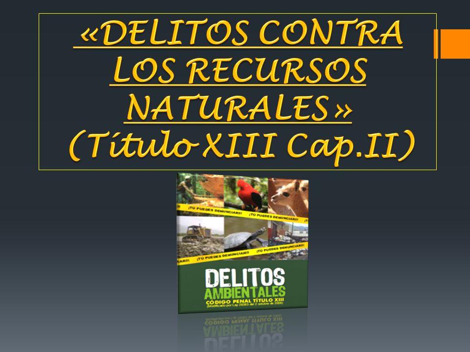 LOS RECURSOS NATURALES»