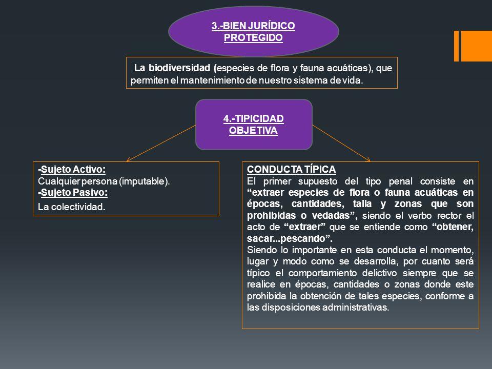 3.-BIEN JURÍDICO PROTEGIDO