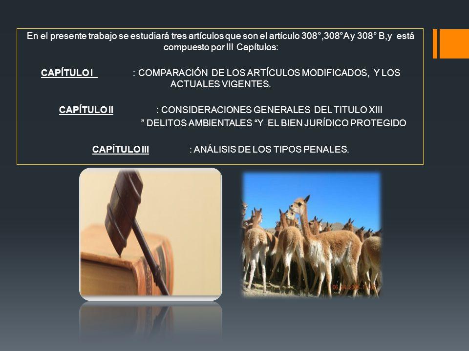 CAPÍTULO II : CONSIDERACIONES GENERALES DEL TITULO XIII