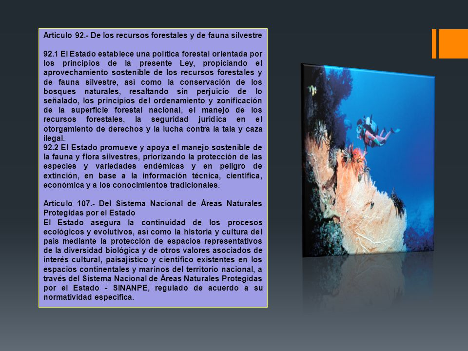 Artículo 92.- De los recursos forestales y de fauna silvestre