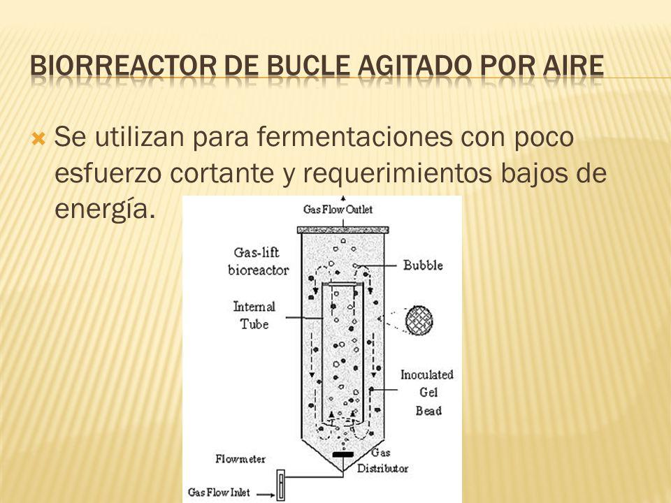 Biorreactor de Bucle agitado por aire