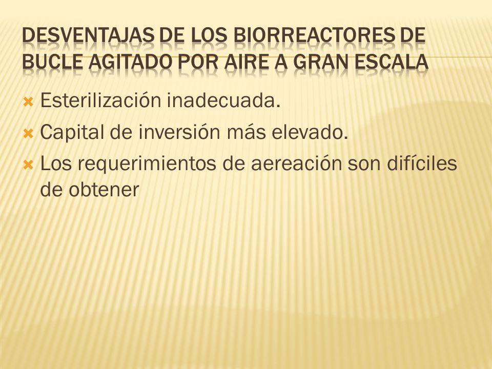 Desventajas de los biorreactores de bucle agitado por aire a gran escala