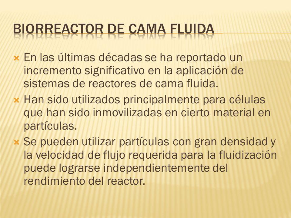 Biorreactor de cama fluida