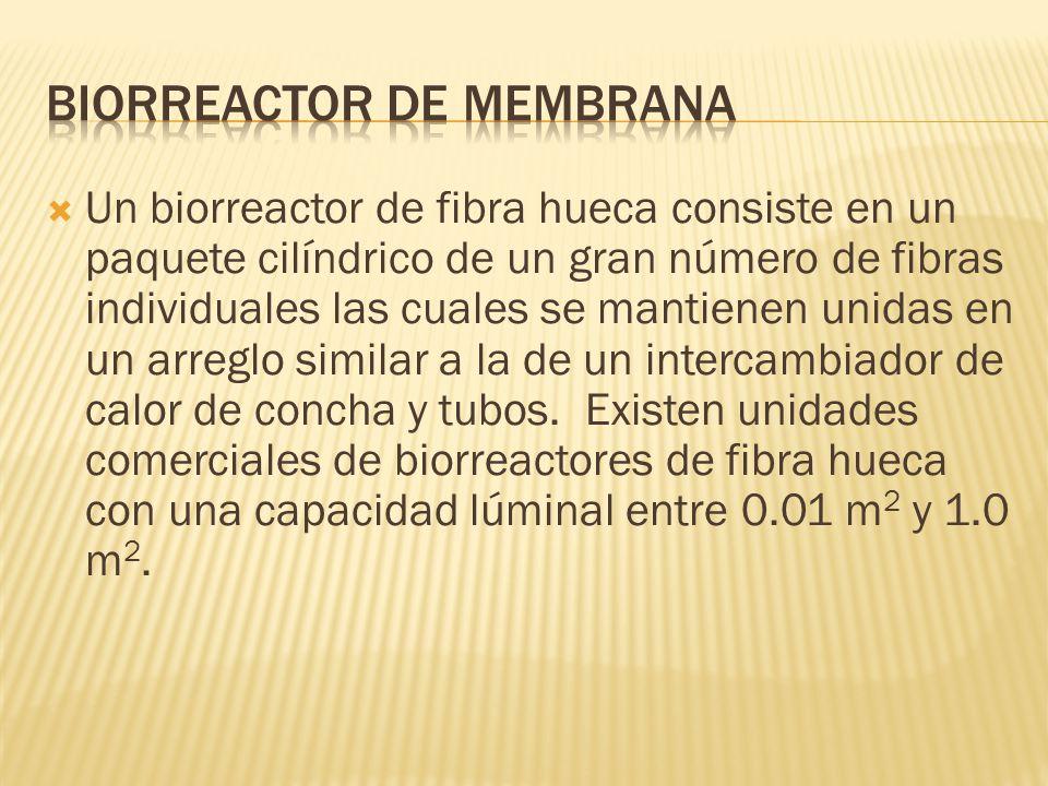 Biorreactor de membrana