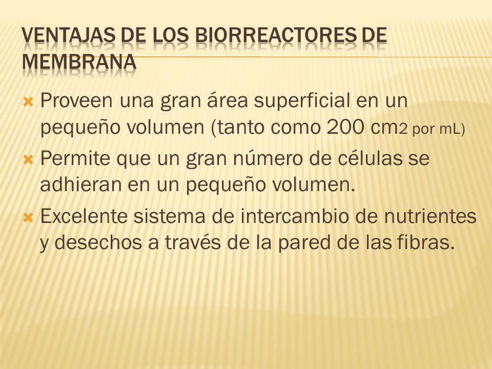 Ventajas de los biorreactores de membrana