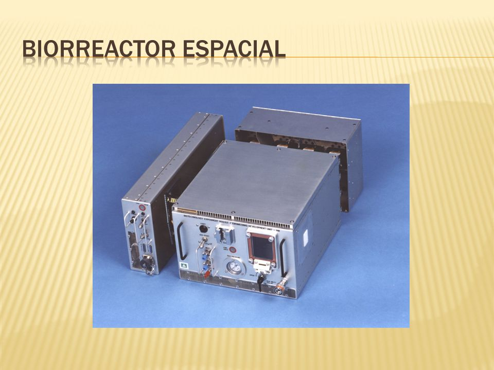 Biorreactor espacial
