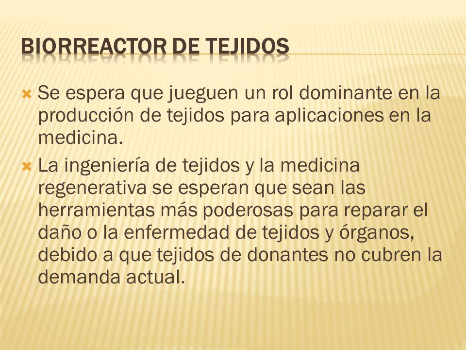Biorreactor de Tejidos