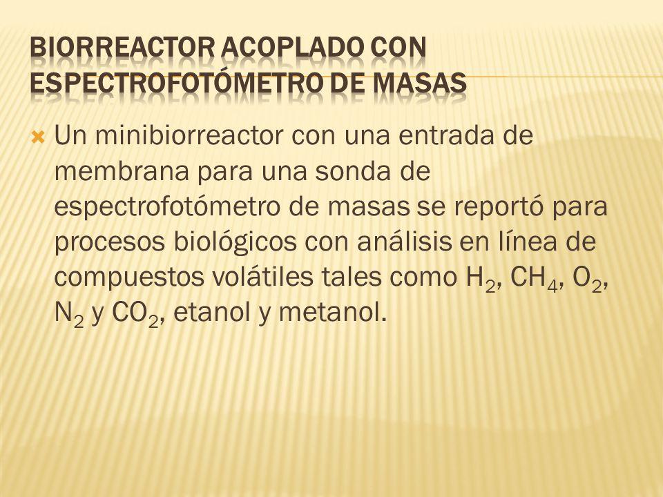 Biorreactor Acoplado con Espectrofotómetro de Masas