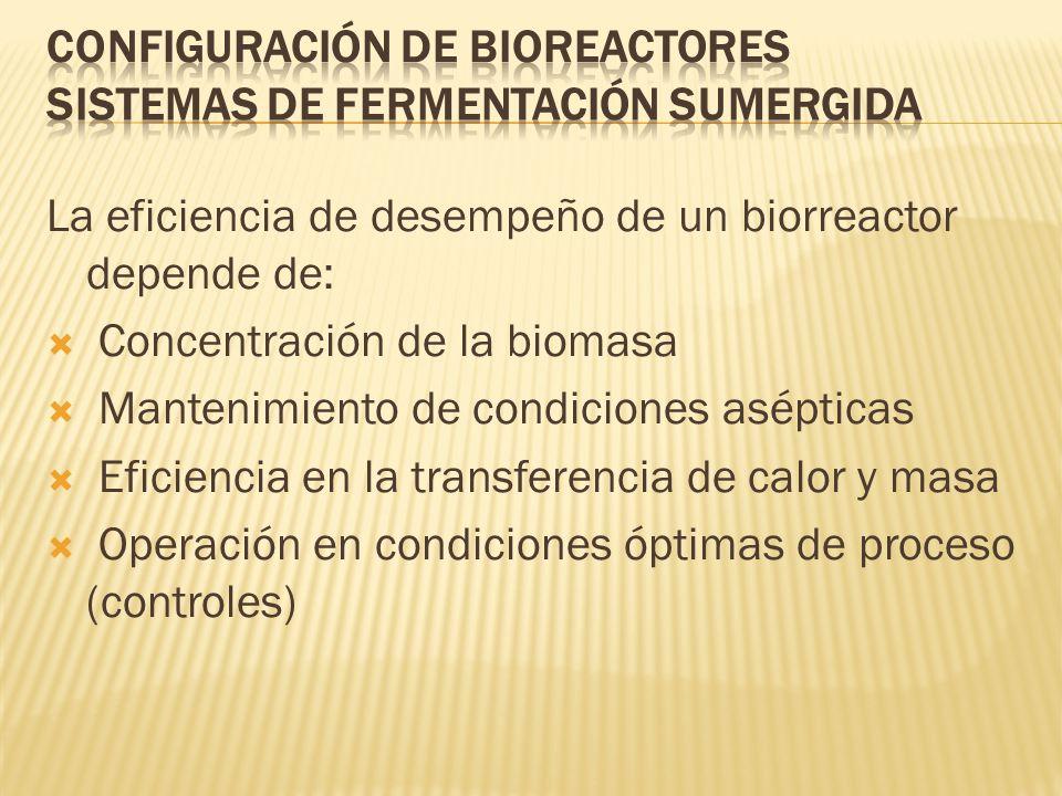 Configuración de Bioreactores Sistemas de Fermentación Sumergida