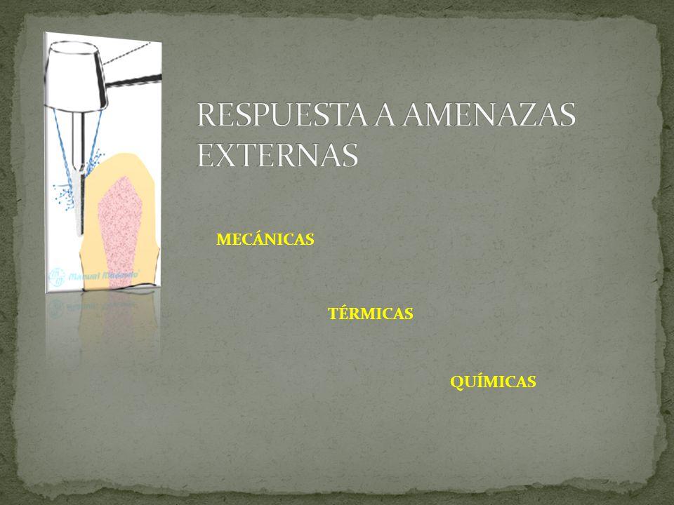 RESPUESTA A AMENAZAS EXTERNAS