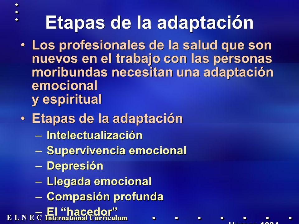 Etapas de la adaptación