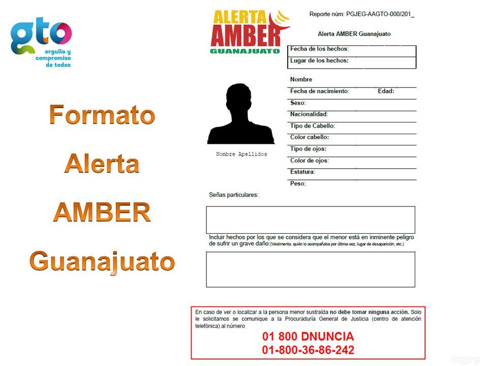 Formato Alerta AMBER Guanajuato