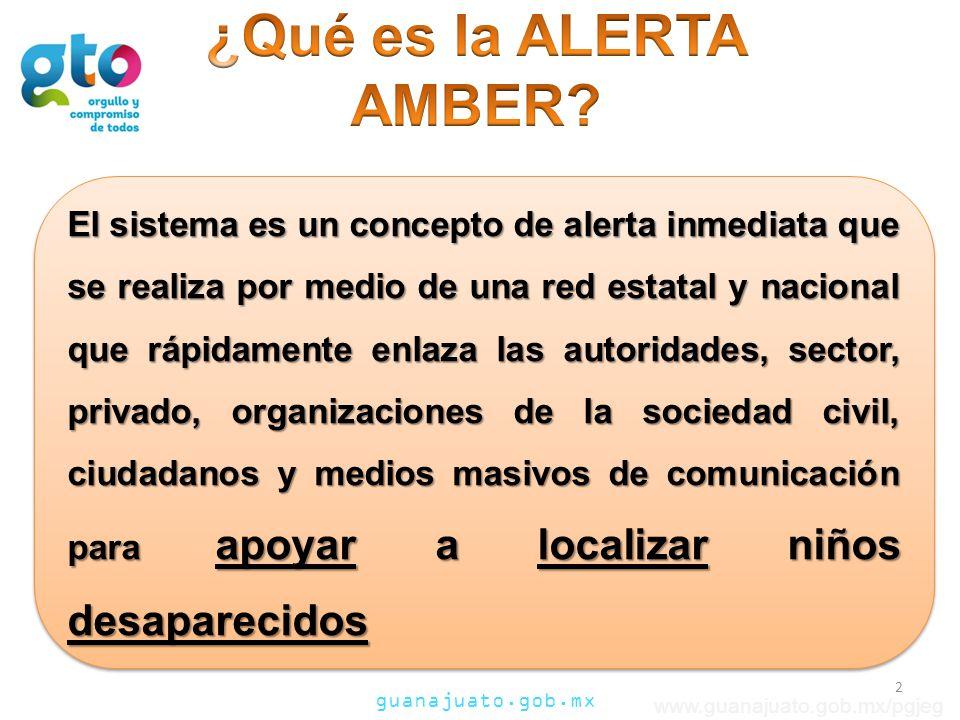 ¿Qué es la ALERTA AMBER