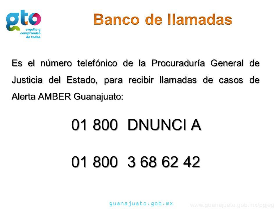 Banco de llamadas 01 800 DNUNCI A 01 800 3 68 62 42