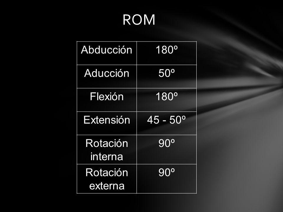 ROM Abducción 180º Aducción 50º Flexión Extensión 45 - 50º