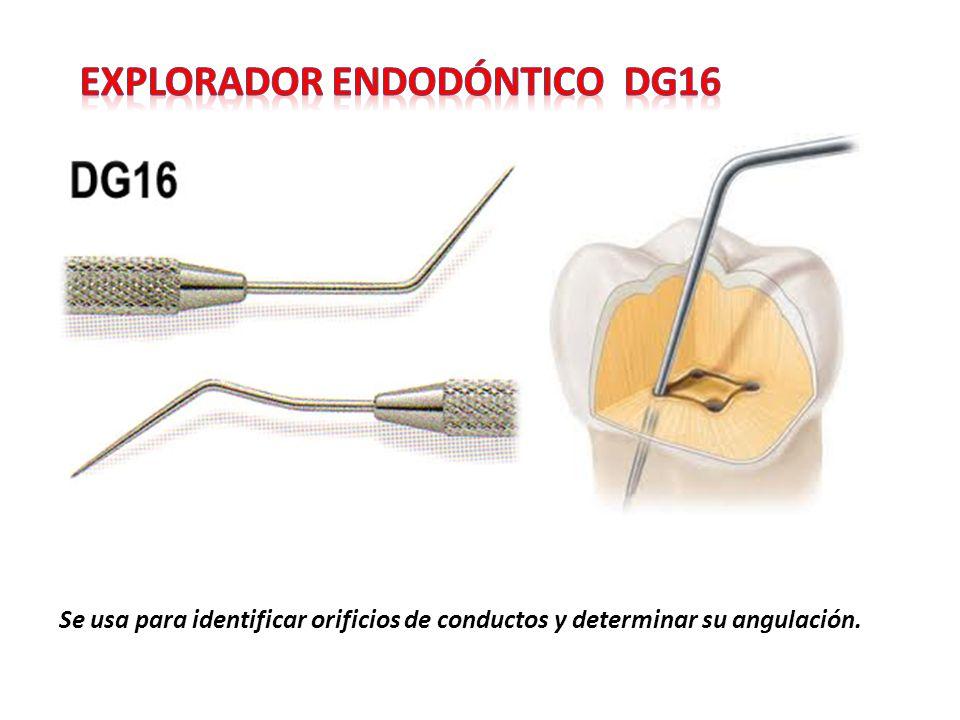 Explorador endodóntico dg16
