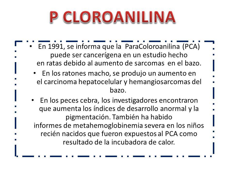 P CLOROANILINA