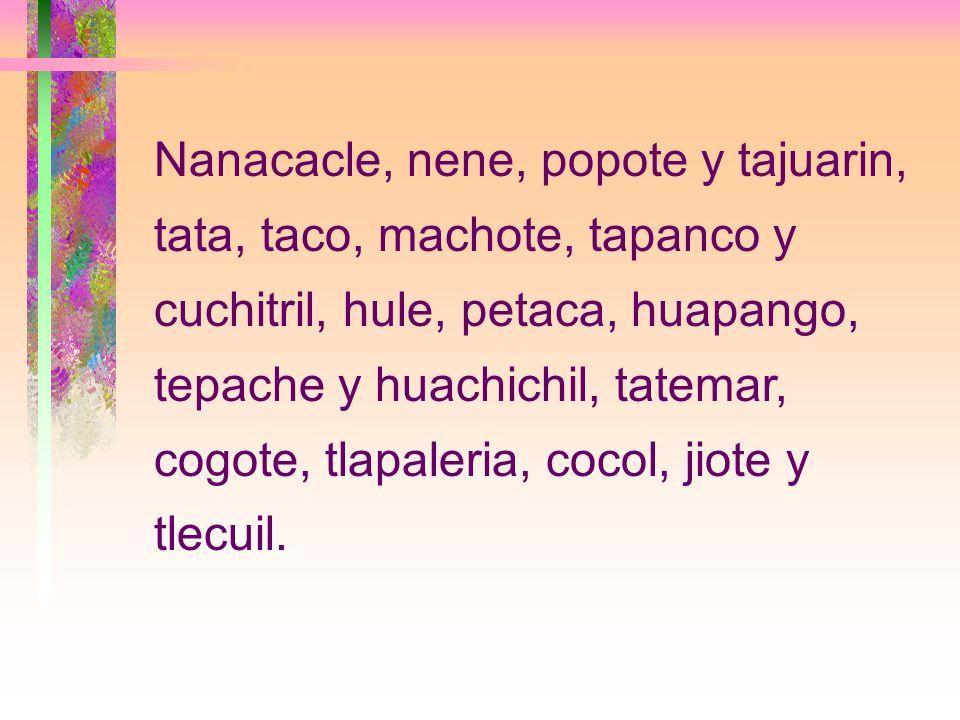 Nanacacle, nene, popote y tajuarin, tata, taco, machote, tapanco y cuchitril, hule, petaca, huapango, tepache y huachichil, tatemar, cogote, tlapaleria, cocol, jiote y tlecuil.