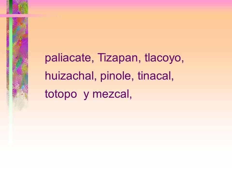 paliacate, Tizapan, tlacoyo, huizachal, pinole, tinacal, totopo y mezcal,
