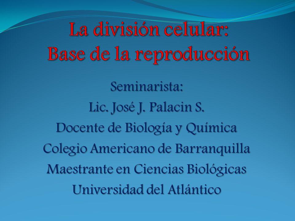 La división celular: Base de la reproducción