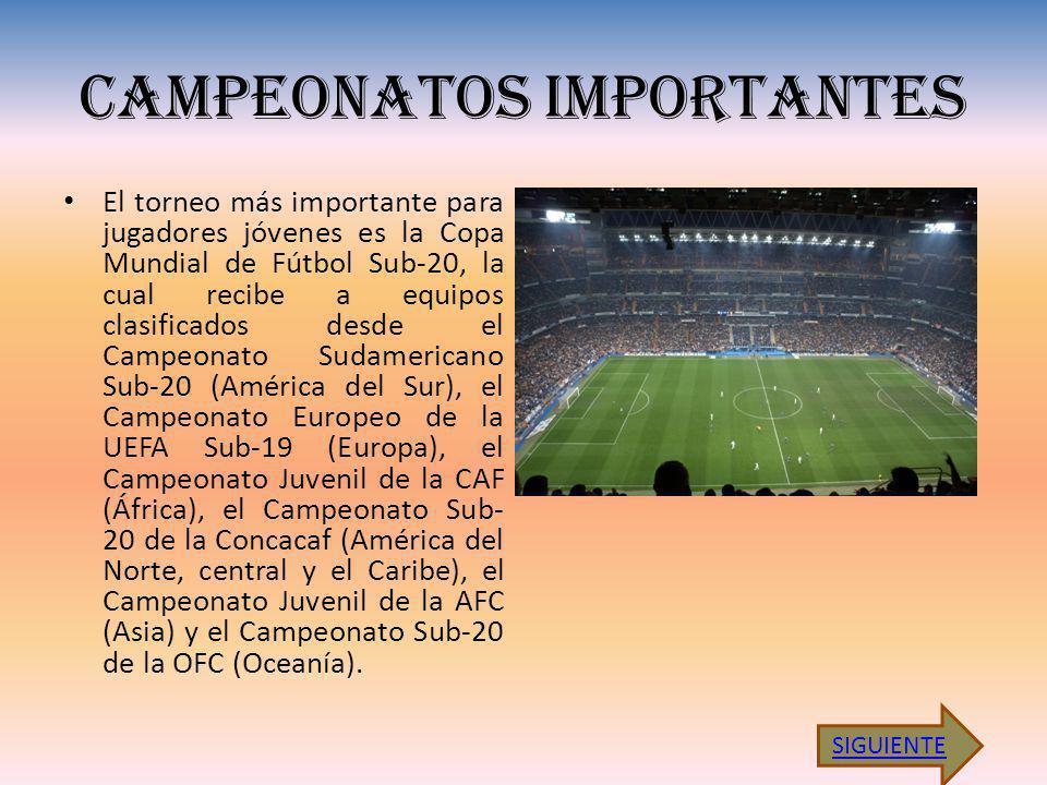CAMPEONATOS IMPORTANTES