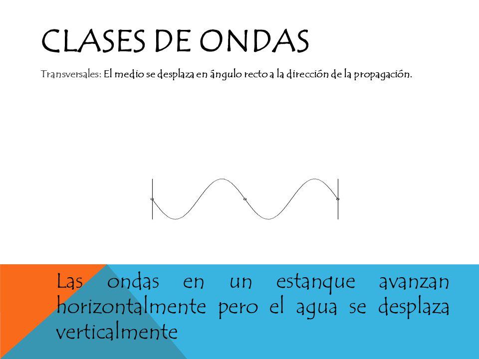 Clases de ondas Transversales: El medio se desplaza en ángulo recto a la dirección de la propagación.