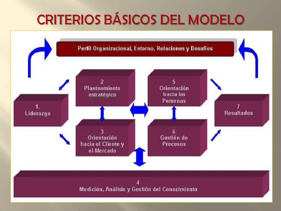CRITERIOS BÁSICOS DEL MODELO