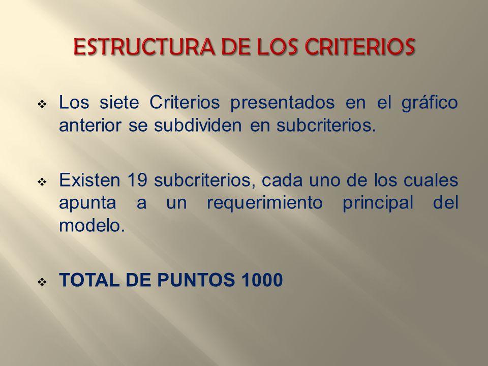 ESTRUCTURA DE LOS CRITERIOS