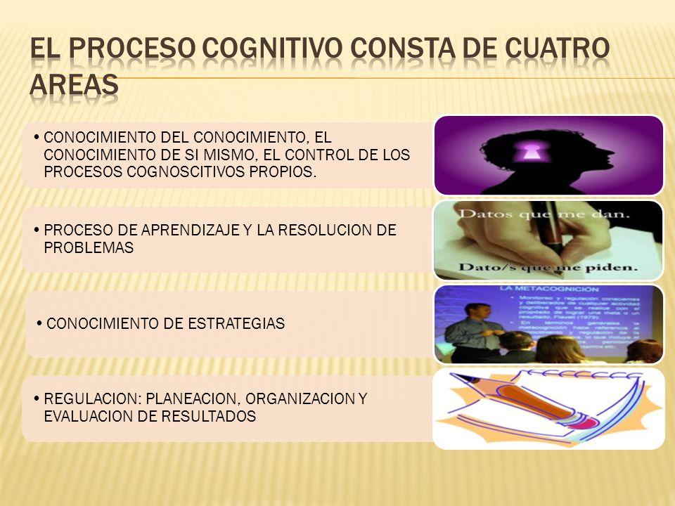 EL PROCESO COGNITIVO CONSTA DE CUATRO AREAS