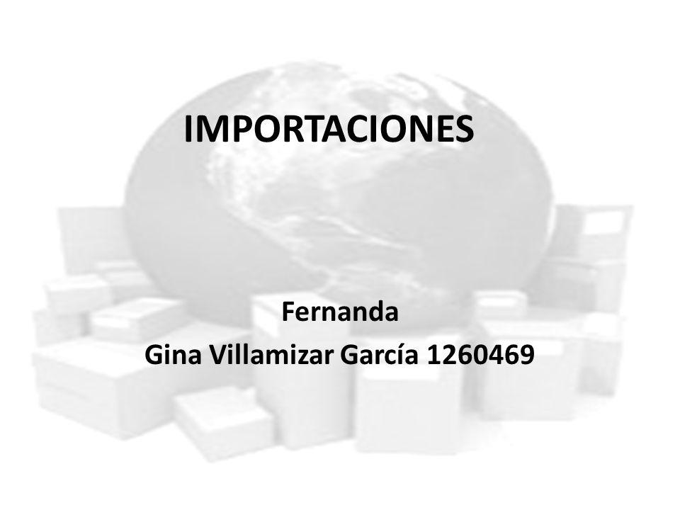 Fernanda Gina Villamizar García 1260469