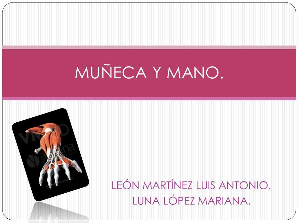 LEÓN MARTÍNEZ LUIS ANTONIO. LUNA LÓPEZ MARIANA.