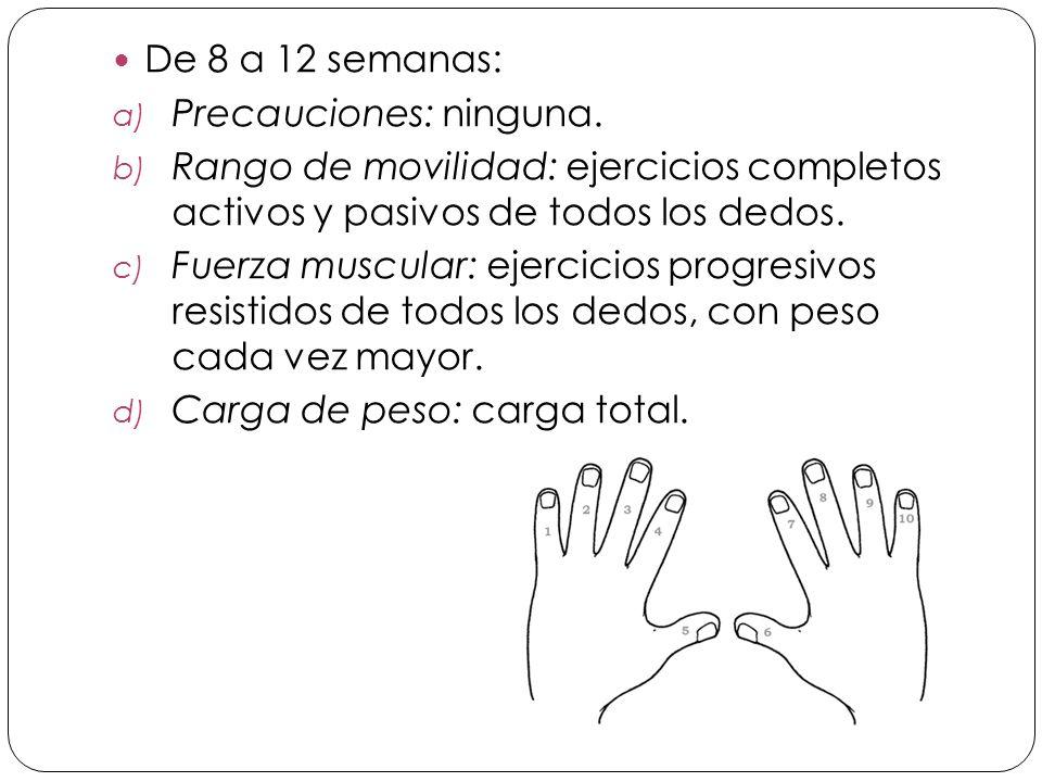De 8 a 12 semanas: Precauciones: ninguna. Rango de movilidad: ejercicios completos activos y pasivos de todos los dedos.