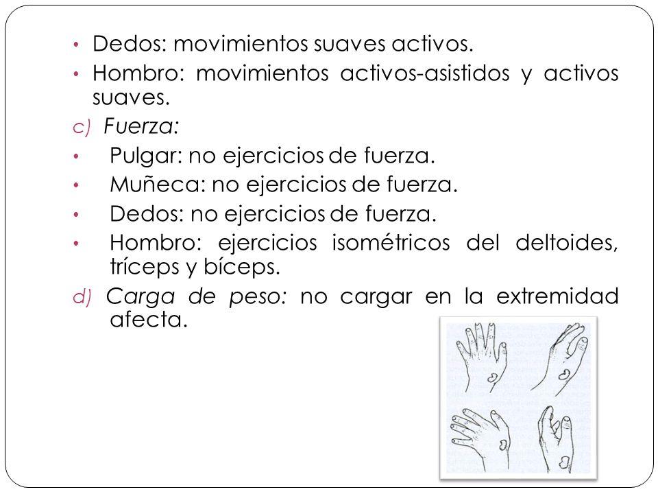 Dedos: movimientos suaves activos.