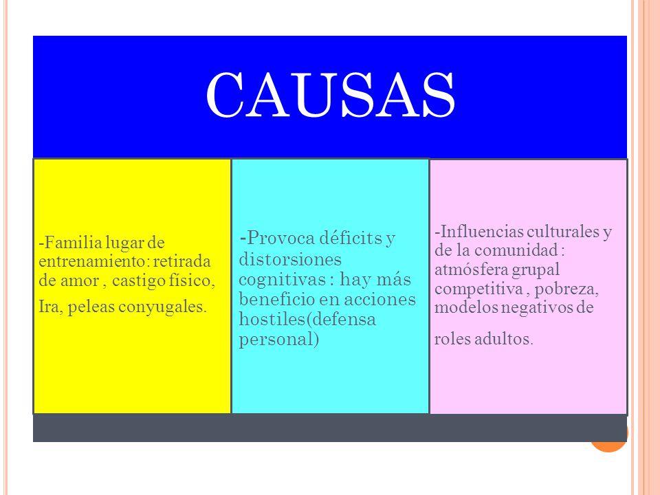 CAUSAS -Familia lugar de entrenamiento: retirada de amor , castigo físico, Ira, peleas conyugales.