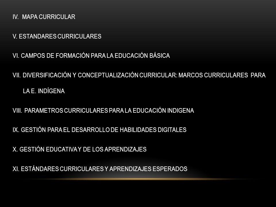 IV. MAPA CURRICULAR V. ESTANDARES CURRICULARES VI
