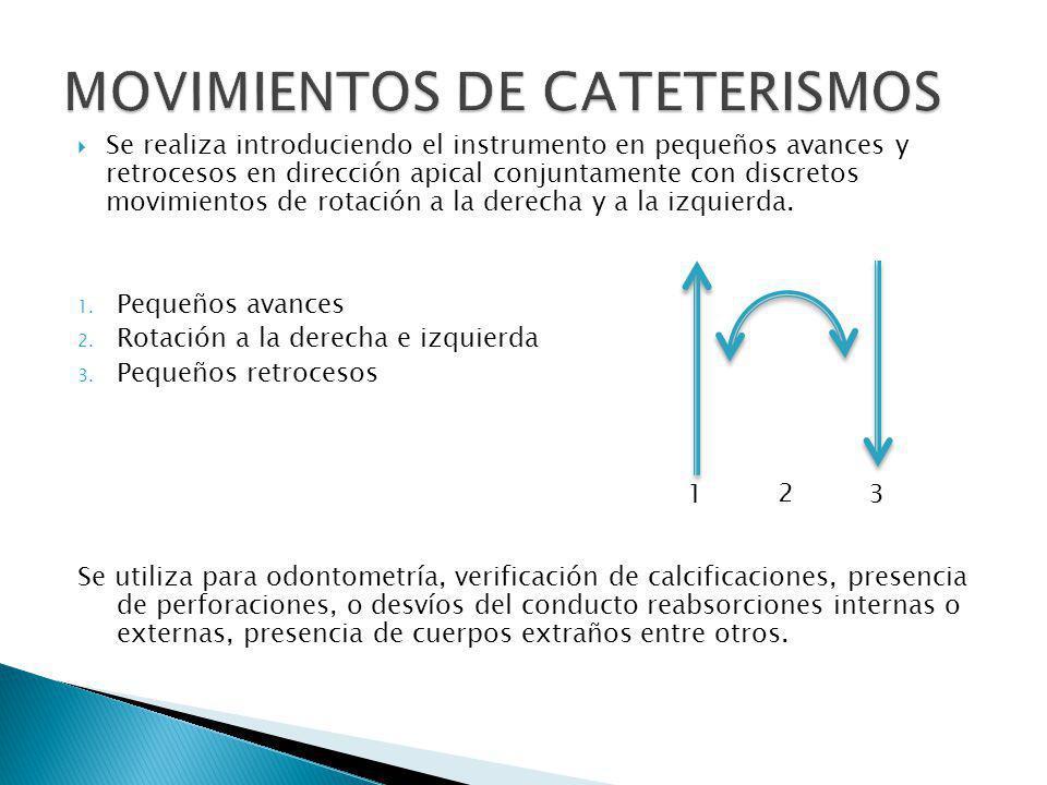 MOVIMIENTOS DE CATETERISMOS