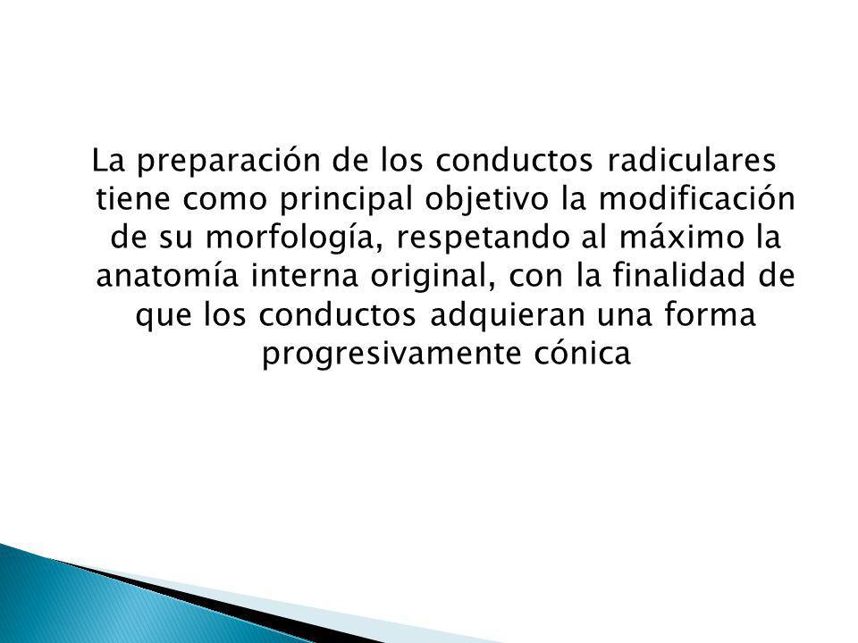 La preparación de los conductos radiculares tiene como principal objetivo la modificación de su morfología, respetando al máximo la anatomía interna original, con la finalidad de que los conductos adquieran una forma progresivamente cónica