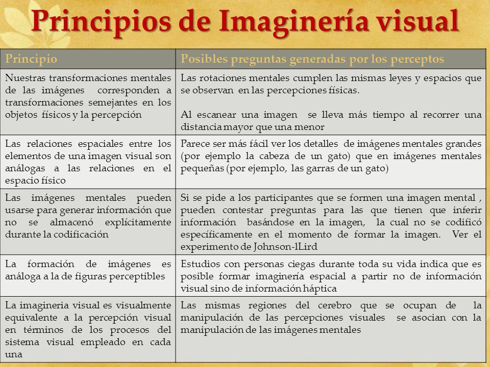 Principios de Imaginería visual