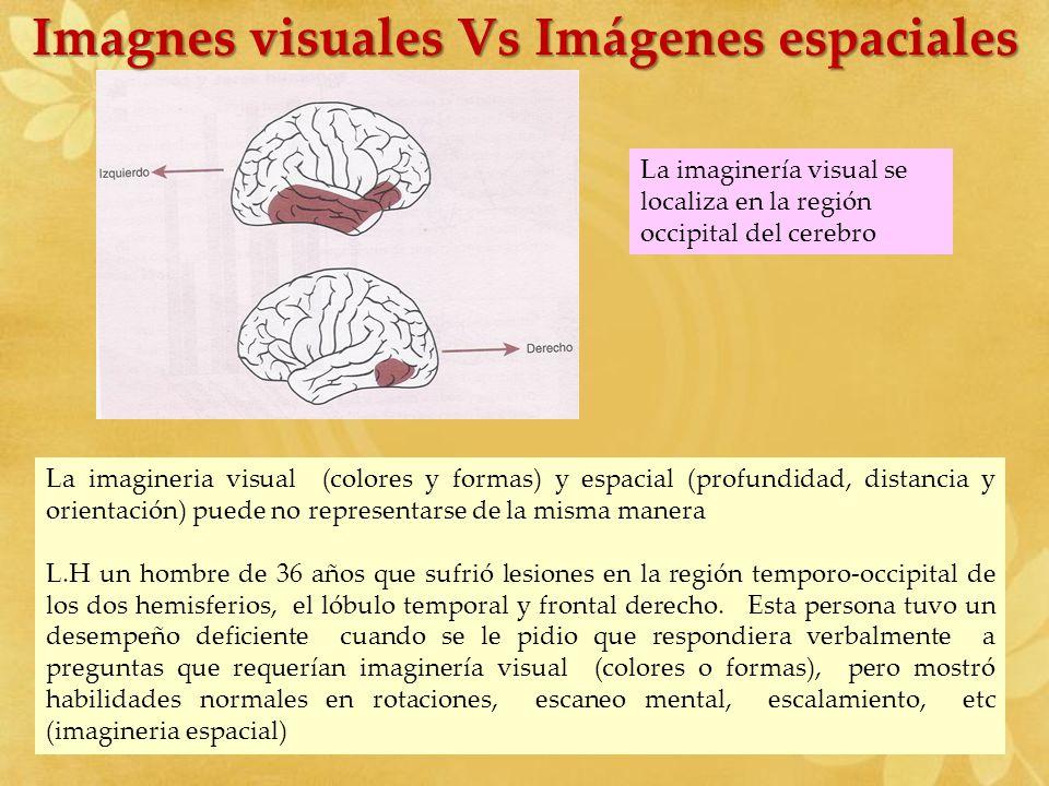 Imagnes visuales Vs Imágenes espaciales