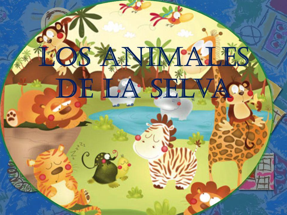 Los Animales de la selva