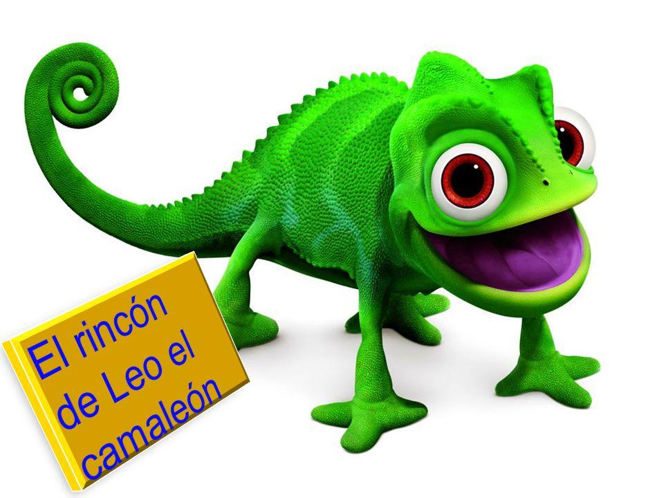 El rincón de Leo el camaleón