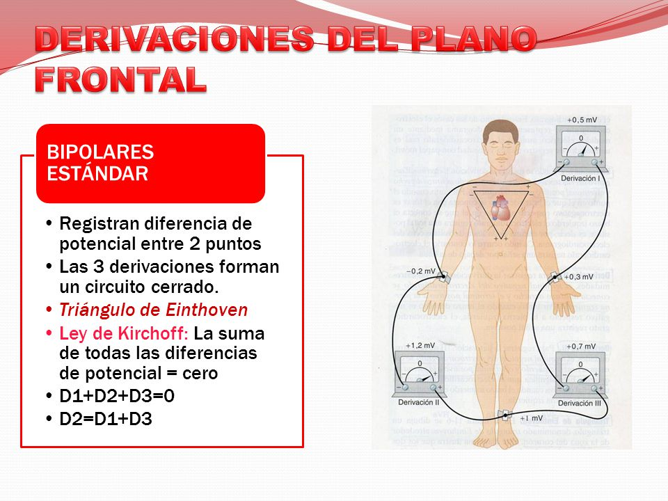 DERIVACIONES DEL PLANO FRONTAL