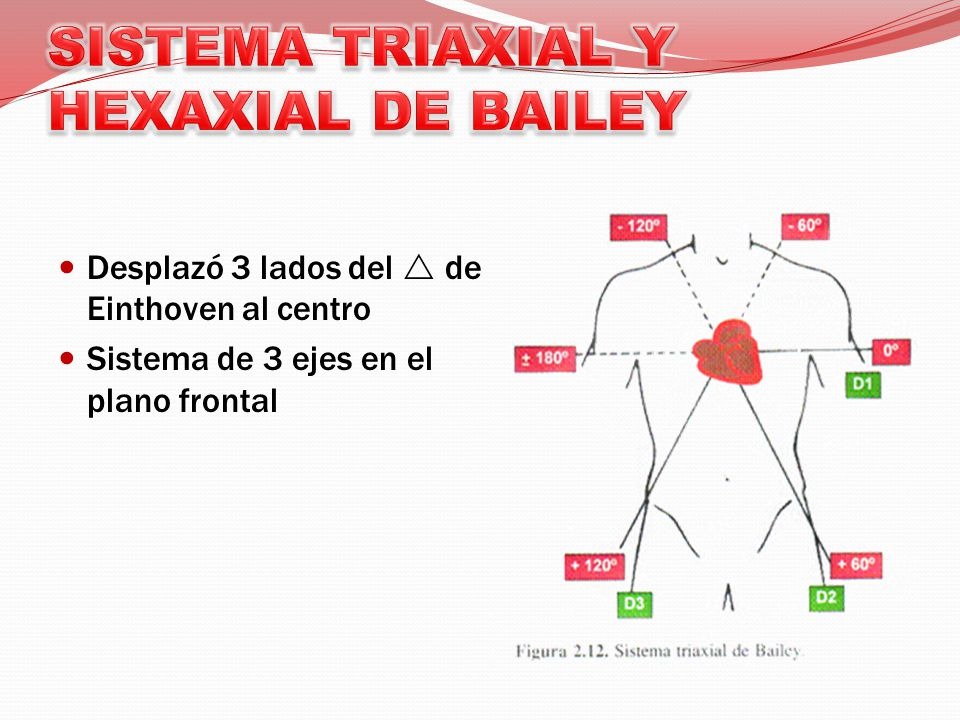 SISTEMA TRIAXIAL Y HEXAXIAL DE BAILEY